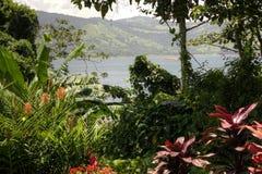 Tropischer und szenischer Costa Rica stockfotografie