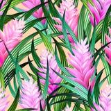 Tropischer Vektor mit Blumen Lizenzfreie Stockfotos