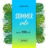 Tropischer Verkauf Rabattentwurfshintergrund Plakat mit Palmblättern, Dschungelblatt und Handschriftsbeschriftung Klarer Hintergr lizenzfreie abbildung