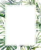 Tropischer vertikaler Rahmen des Aquarells mit exotischen Palmblättern Handgemalte Blumenillustration mit Banane, Kokosnuss und stock abbildung