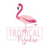 Tropischer Vogel Flamingo-Hintergrund Palmen mit dem Meer und dem hölzernen Brett vektor abbildung