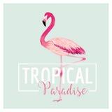 Tropischer Vogel Flamingo-Hintergrund Palmen mit dem Meer und dem hölzernen Brett Lizenzfreie Stockfotografie