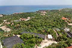 Tropischer Wald Yucatan Lizenzfreies Stockfoto