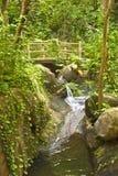 Tropischer Wasserfall Lizenzfreies Stockbild