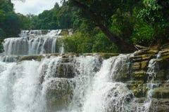 Tropischer Wasserfall. Stockfotografie