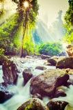 Tropischer Wasserfall Stockfotografie