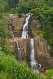 Tropischer Wasserfall Stockbilder