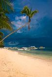 Tropischer weißer Sandstrand mit Kokosnussbäumen Stockbild