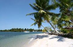 Tropischer weißer Sand-Strand Stockfoto