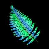 Tropisches Blatt - Farn Neonskizze der hellen Steigung der Tätowierung lizenzfreie abbildung