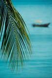 Tropisches Boot Stockbilder