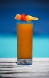 Tropisches Cocktail Lizenzfreie Stockfotografie