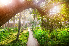 Tropisches Dorf Stockfotos