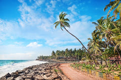 Tropisches Dorf nahe dem Ozean Stockfotografie