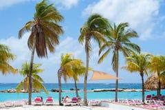 Tropisches Ferienort mit Pool und blauem Himmel der Palmen Lizenzfreie Stockbilder
