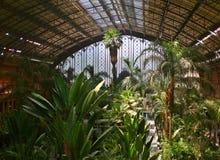 Tropisches grünes Haus Stockbilder