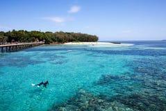 Tropisches grünes Inselschnorcheln Lizenzfreie Stockbilder