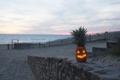 Tropisches Halloween Stockfoto
