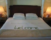 Tropisches Hotelzimmer Lizenzfreie Stockfotos