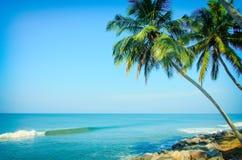 Tropisches indisches Dorf in Varkala, Kerala, Indien Stockfotografie