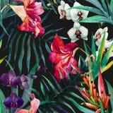 Tropisches Muster Lizenzfreies Stockfoto