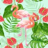 Tropisches Muster des Flamingos vektor abbildung
