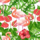 Tropisches Muster des Flamingos stock abbildung