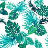 Tropisches Muster des Vektors mit Palmen Stockbilder