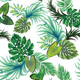 Tropisches Muster des Vektors mit Palmen Stockfotos