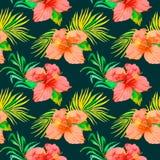 Tropisches Muster Hibiscus, monstera Blatt, Palmblätter Stockfotografie