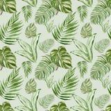 Tropisches nahtloses Muster der Blätter und der Anlagen des Aquarells Exotische grüne Palmblätter, monstera Blatt auf hellgrünem  stock abbildung