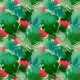 Tropisches nahtloses Muster mit Dschungelblättern und Wassermelonenfruchtblumenhintergrund Stockbilder