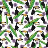 Tropisches nahtloses Muster mit Tukanen, grüne Blätter, purpurrote Blumen auf weißem Hintergrund Stockbilder