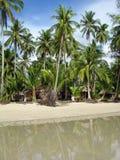 Tropisches Palm Beach, Thailand Lizenzfreie Stockfotografie