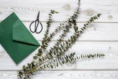 Tropisches Palmblatt Lizenzfreies Stockfoto