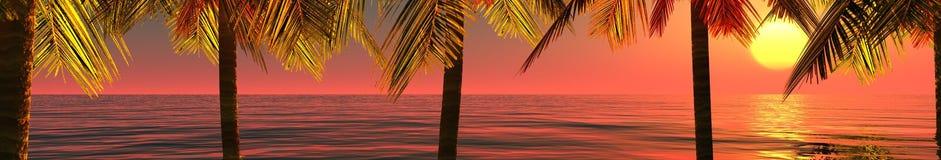 Tropisches Panorama, der Sonnenuntergang und Palmen Stockbild