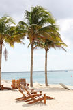 Tropisches Paradies Stockbild