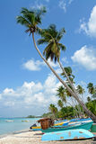 Tropisches Paradies Lizenzfreie Stockfotografie