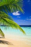 Tropisches Paradies bei Maldives stockfoto