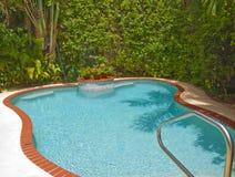 Tropisches Pool Stockbild