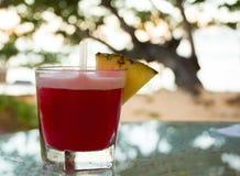 Tropisches, rotes Cocktail lizenzfreie stockbilder