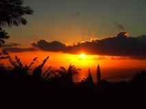 Tropisches Schattenbild der Sonnenuntergangvergangenheit von Bäumen durch die Wolken vorbei Stockfotografie