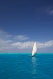 Tropisches Segeln Lizenzfreies Stockfoto
