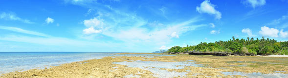 Tropisches Strand-Panorama Lizenzfreie Stockfotografie