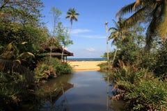 Tropisches Strandhaus im Dschungel lizenzfreies stockbild