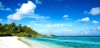 Tropisches Strandpanorama Stockfoto