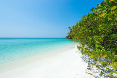 Tropisches Strandparadies voll des haarscharfen Türkiswassers und der weißen Sandbucht Stockfotografie