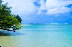 Tropisches Ufer mit Touristen Stockfotografie