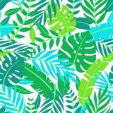 Tropisches Vektorgrün lässt nahtloses Muster Exotische Tapete Palmen mit dem Meer und dem hölzernen Brett Tropisches Dschungellau vektor abbildung