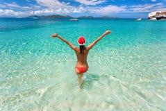 Tropisches Weihnachten lizenzfreie stockbilder